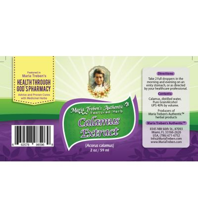 Calamus (Acorus calamus) 2oz/59ml Herbal Extract / Tincture - Maria Treben's Authentic™ Featured Herb