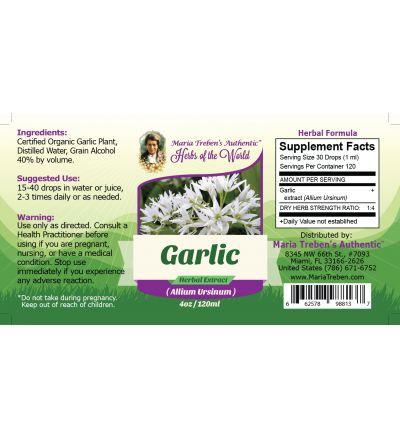 Garlic Bulb (Allium sativum) 4oz/118ml Herbal Extract / Tincture - Maria Treben's Authentic™ Herbs of the World
