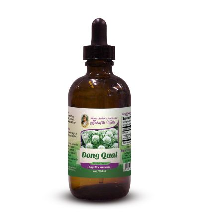 Dong Quai Root (Angelica sinensis) 4oz/118ml Herbal Extract / Tincture - Maria Treben's Authentic™ Herbs of the World